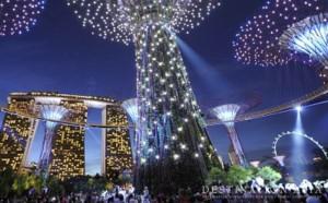 Asia Talk-Singapore Dec16