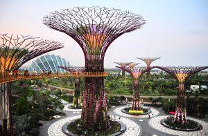 Activity_Singapore700x459